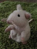 Ratinho II
