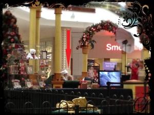 Santa posing for photographs at the shopping mall.