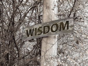 Which Way to Wisdom, Please?