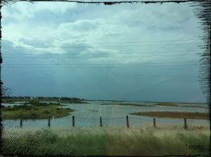 The marshes on our way back towards the mainland... something building up in the distance.